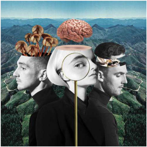 CLEAN BANDIT: What Is Love?